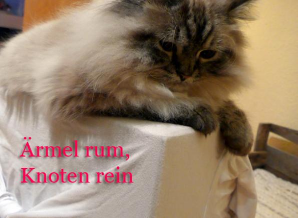 Katzenhöhle-Rückseite-Knoten