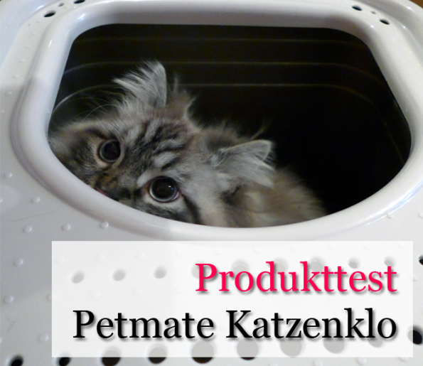 Petmate Katzenklo mit Simba