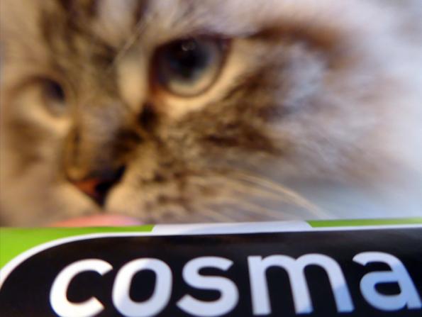 cosma snackies simba