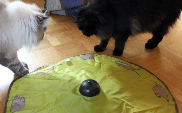 Tchibo Mäusejagd Blogkatzen