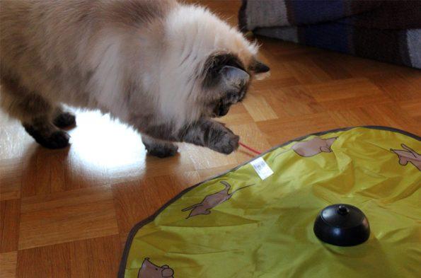 Tchibo Katzenspielzeug mit Simba