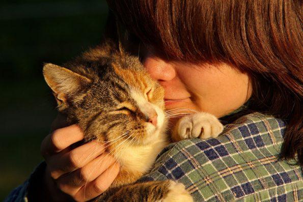 Katze und Frauchen schmusen