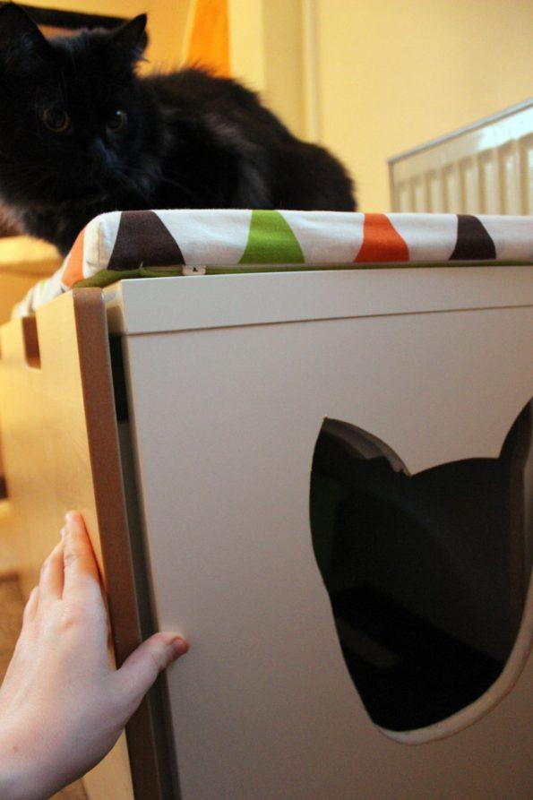 Katzenklo Verstecken So Gehts