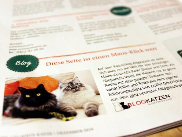 Blogkatzen im Geliebte Katze Magazin