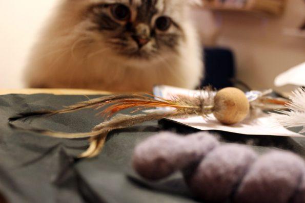 julinka_katzenspielzeug ping korkbaellchen