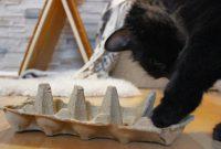 Katzenspielzeug basteln- simpel & schnell