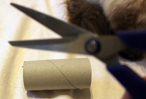 Katzenspielzeug selbst basteln- KLopapierrolle
