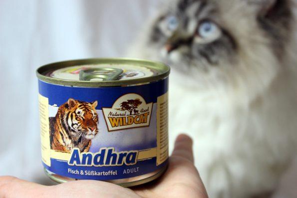 Wildcat Katzenfutter Dose