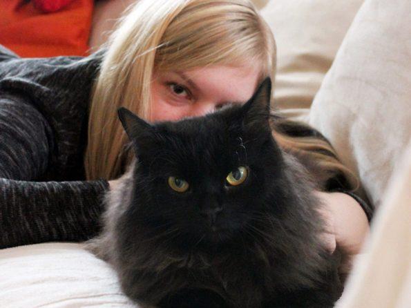 Schwarze Katze mit Frauchen