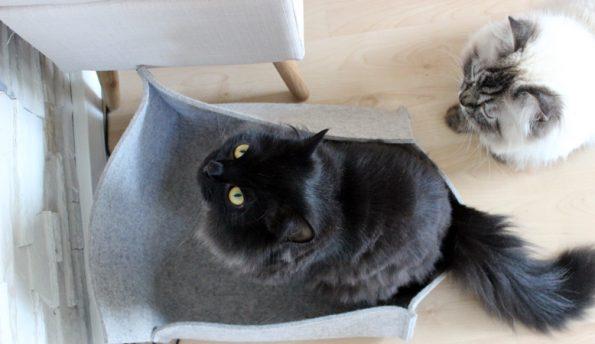 Katzenbett aus Filz von stylecats von oben