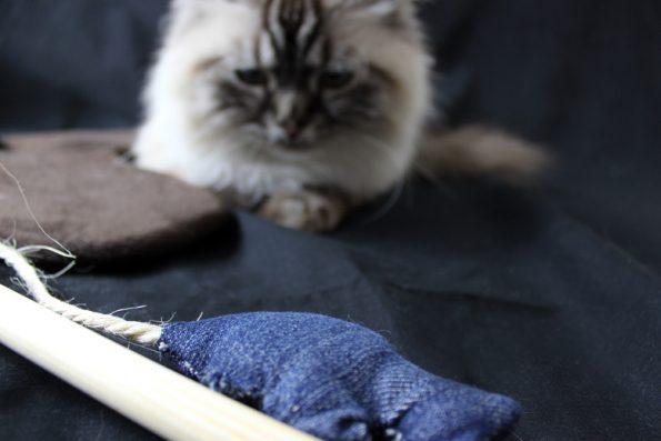 Katzenangel selbstgemacht