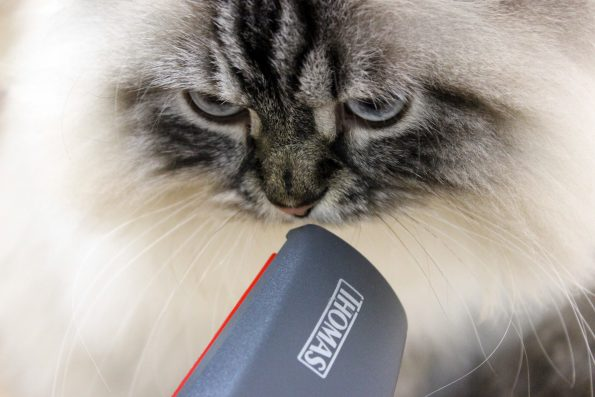 Thomas Staubsauger Tierhaardüse mit Katze