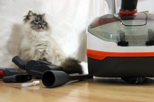 Thomas Staubsauger für Tierhaare mit Katze und Zubehör