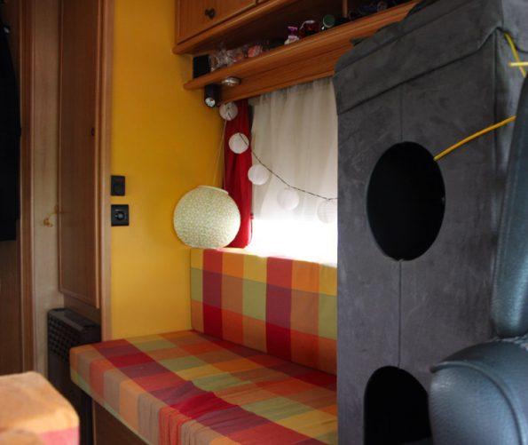 Wohnmobil mit Katzen innen