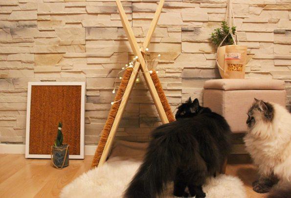 Katzentipi und Kratzmatte mit Katzen