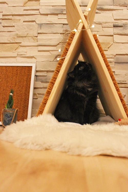 Katzentipi aus Holz