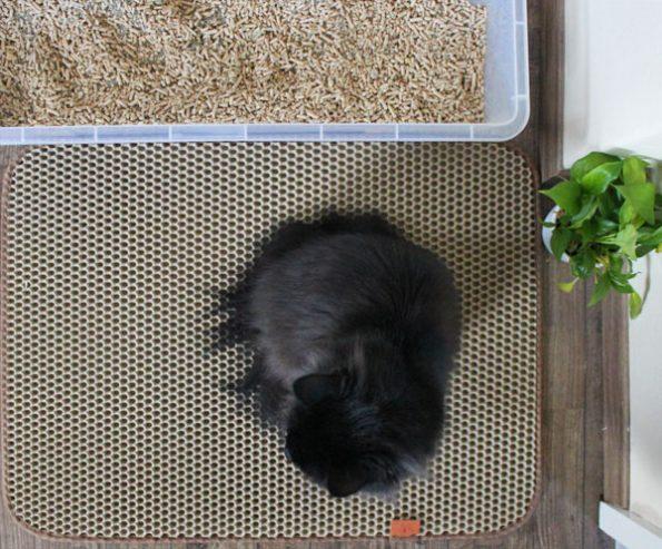 Katzenklo-Matte von oben