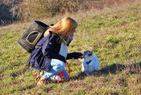 Blog-Geburtstag: Drei Jahre, drei Katzen