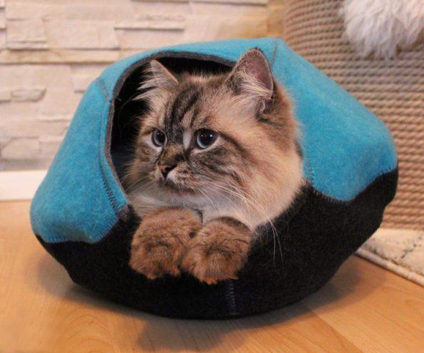 KatzenhöhleUnivok