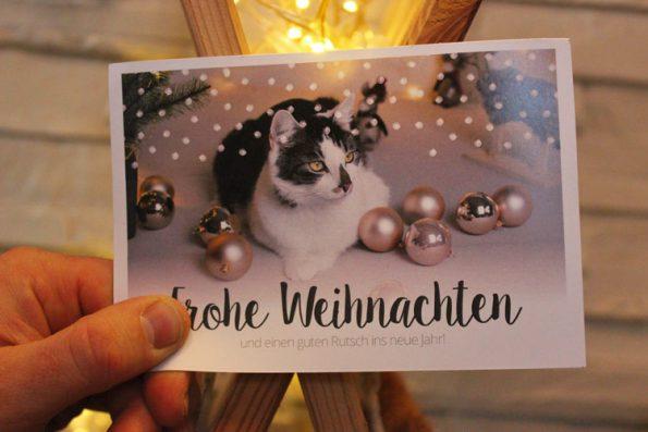 Fensterkatzen_Tauschpaket_Weihnachtspost