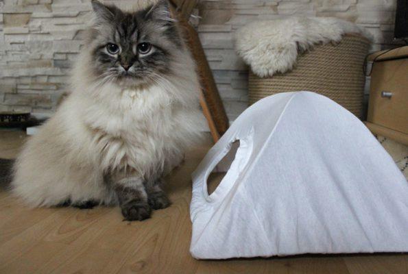 DIY Katzenzelt aus Kleiderbügeln