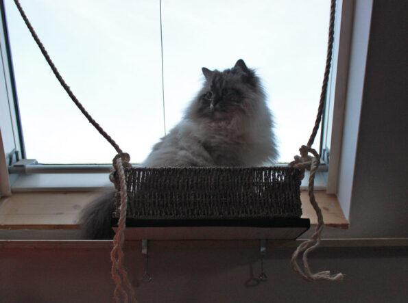 Fensterliege für Katzen- DIY