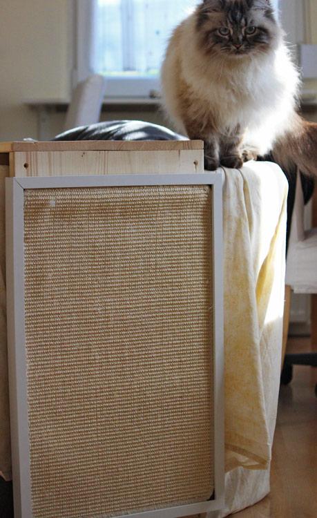 Katzen Kratzbrett für die Wand