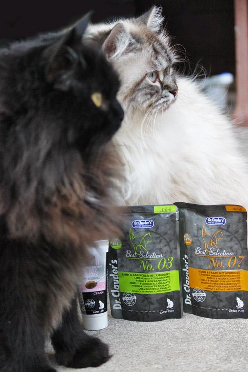 Dr Clauder's Katzenfutter im Test