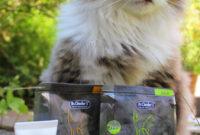 Meine Katze is(s)t wählerisch- 7 Dinge, die du tun kannst – in Koop mit Dr. Clauder's