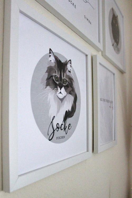Katzenportrait mit Katze Socke an Bilderwand
